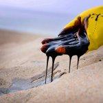 Azərbaycan nefti bir az da bahalaşdı